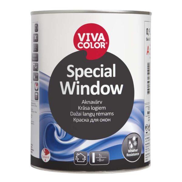 Special Window